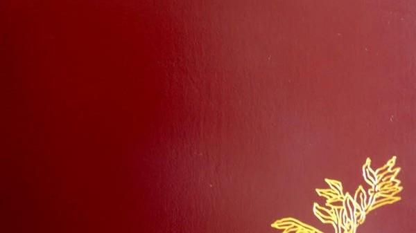 המדריך להוצאת דרכון פורטוגלי